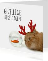 Zakelijke kerstkaart goudvis en kat
