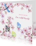 Zomaar bloesemtak vlinders
