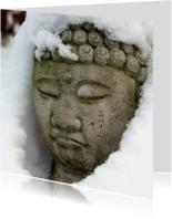 Zomaar - Boedha in de sneeuw- MW