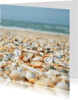 Zomaar kaart strand schelpen en zeewier