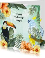 Zomaar tropische vogels