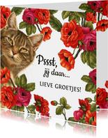 Zomaarkaart Pssst jij daar lieve groetjes bloemen en katten