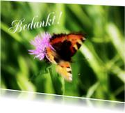 Bedankt vlinder zelf invullen