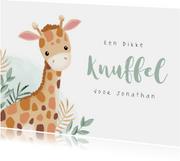 Beterschap dikke knuffel giraf lief hip