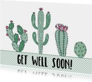 Beterschapskaart Cactus - WW