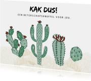 Beterschapskaart Cactus