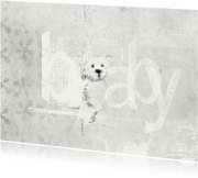 Felicitatiekaart Baby Teddybeer
