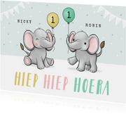 Felicitatiekaart verjaardag tweeling olifantjes feestelijk