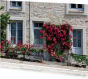 Fotokaart bijzonder huis in frankrijk