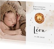 Geboortekaartje met grote foto, leeuwtje en sterretjes