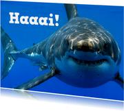Grußkarte Hai