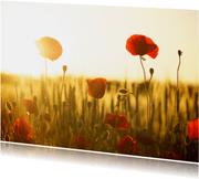Grußkarte mit Blumen und Foto innen