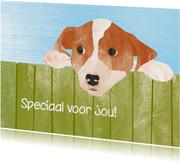Hondje speciaal voor jou