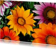 Italiaanse bloemenkaart