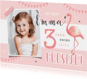 Kinderfeestje uitnodiging meisje flamingo lief hip foto