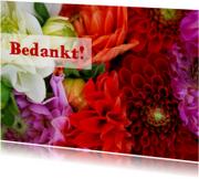 Kleurrijke bloemen av
