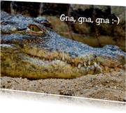 Kroko met sadistische glimlach
