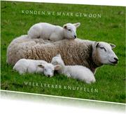 Lentekaart Knuffelkaart Moederschaap met 3 lammetjes