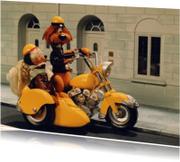 Loeki de Leeuw motor zijspan
