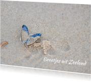 Vakantiekaarten - Mossel op het strand