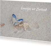 Mossel op het strand