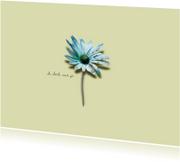 Sterkte Kaart Blauw Margrietje