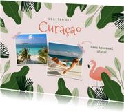Tropische vakantiekaart Curacao jungle flamingo en foto's