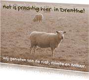 Vakantiekaart mooi Drenthe IW