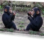 Vriendschapkaart