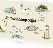 Waddengroet zeehonden en vogels