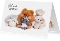 Beterschapskaart - Heel veel knuffels - hond met knuffels