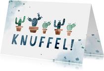Beterschapskaart knuffel met cactussen