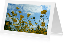 bloemenkaart boter bloemenveld