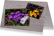 Bloemenkaarten voorjaar MM