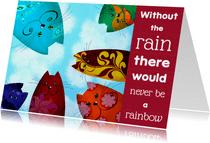 Coachingskaart katten rainbow