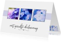 Condoleance - collage hortensia met oprechte deelneming