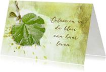 Condoleance kaart fris groen blad