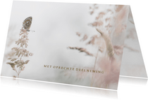 Condoleance vlinder en grassen