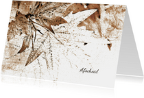 Condoleancekaart autumn leaves