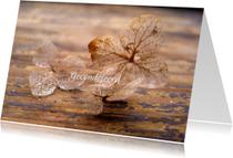 Condoleancekaart, Lichaam en ziel- hortensia foto