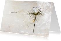 Condoleancekaart Witte Roos Deelneming