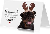 Dieren Kerstkaart - Rottweiler rendier