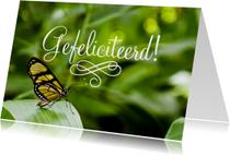 Dieren Vlinder Gefeliciteerd
