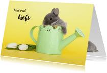 Dierenkaart heel veel liefs konijntje