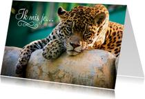 Dierenkaart ik mis je luipaard