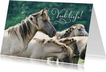 Dierenkaart  paarden veel liefs