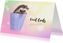Dierenkaarten - Dierenkaart - Schattig - Egeltje