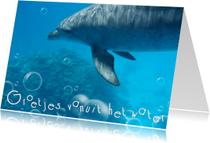 Vakantiekaarten - Dolfijn