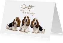 Drie lieve hondjes die sterkte wensen