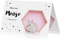 Felicitatie kaart - Geboorte - Lief konijntje roze hartjes